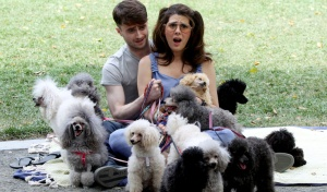 daniel radcliffe lot of dogs
