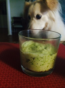 dog with paleo ranch